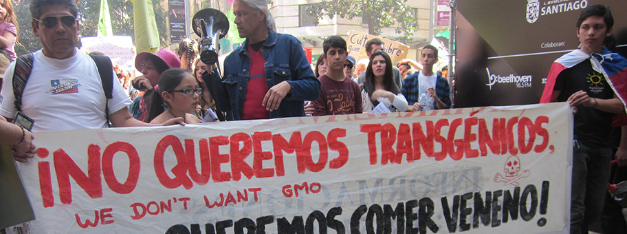 Demonstration gegen Monsanto in Santiago de Chile am 1.